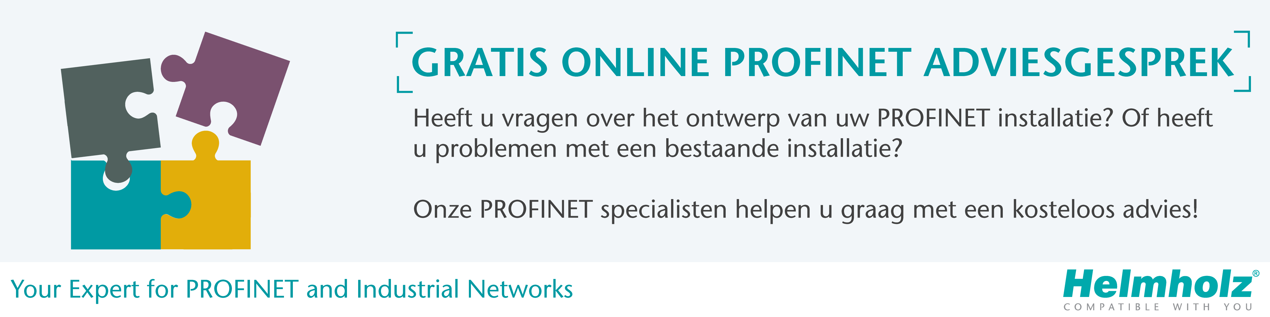 Online adviesgesprek